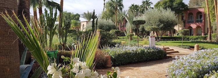 Resorna till Marrakech - nu ännu bättre!